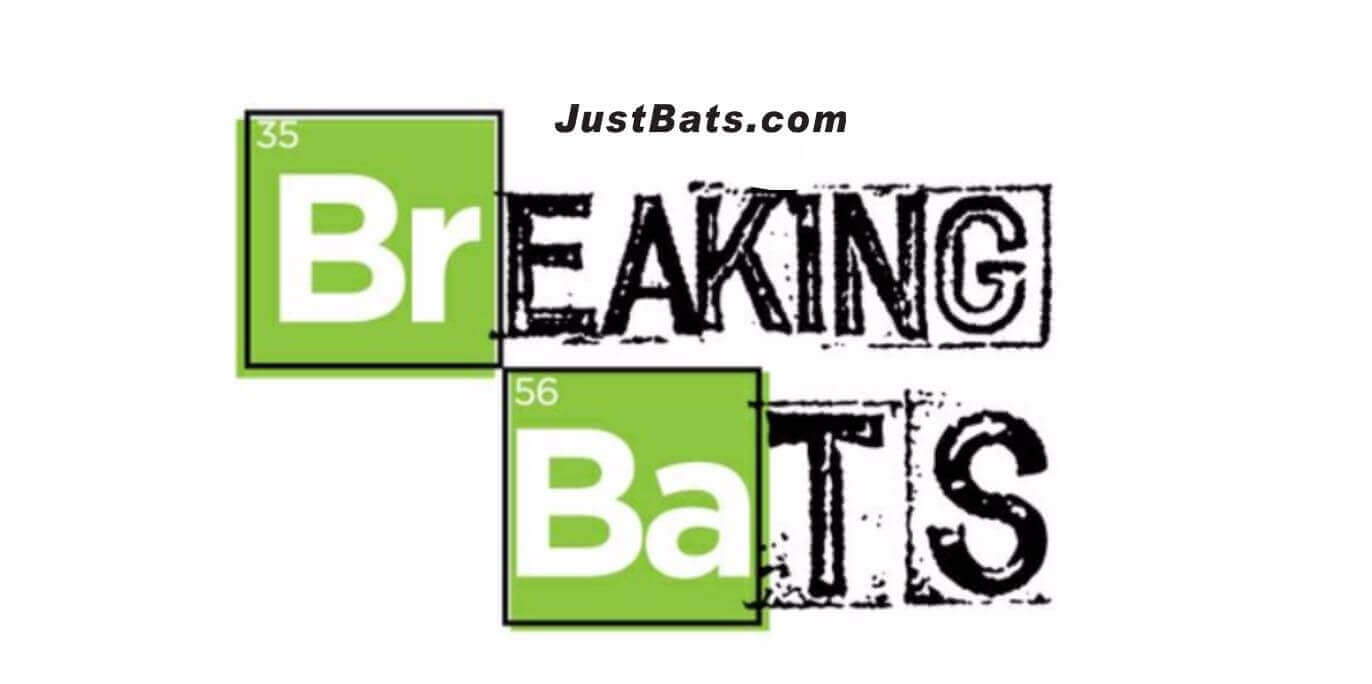 How To Keep Your Wood Bats From Breaking