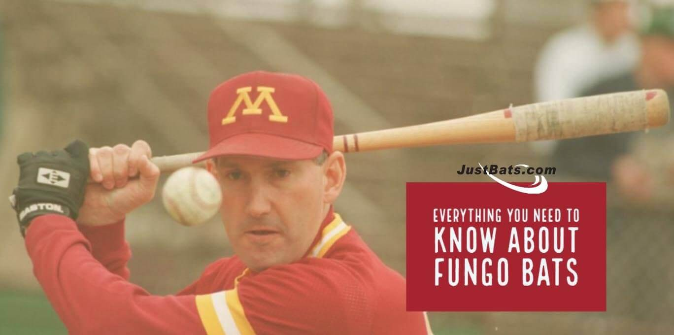 Everything You Need To Know About Fungo Bats