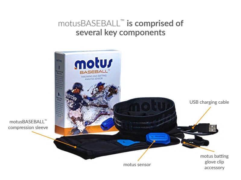motuscomps.jpg