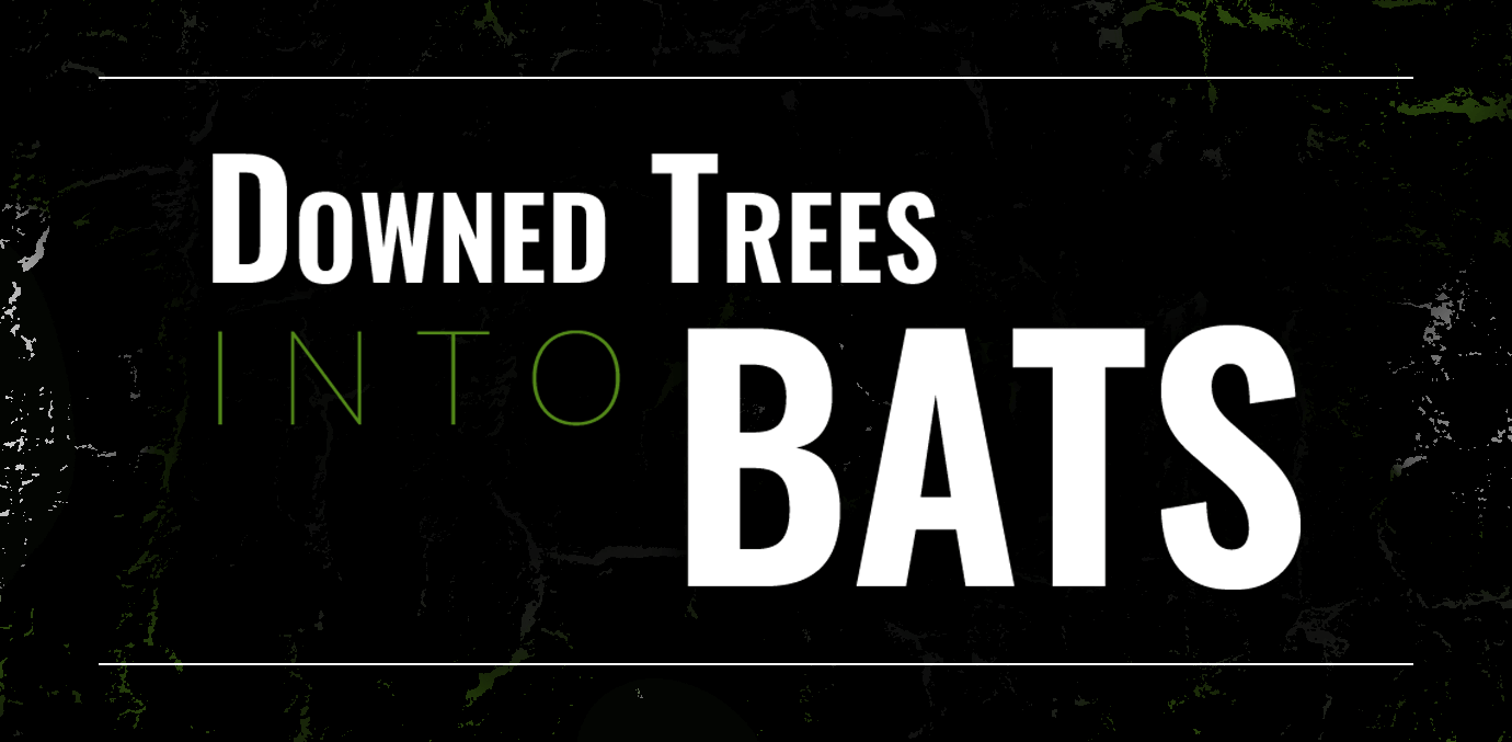Downed Trees into Bats